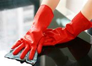 business sector Ancil Gloves